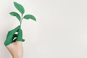 'Plastic alerts' help us go eco